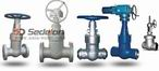 Pressure Seal Gate Valve-HIGH PRESSURE GATE VALVES